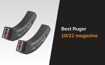 Best Ruger 10 22 Magazine